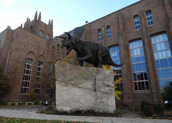 Yale Peabody Museum of Natural History 사진