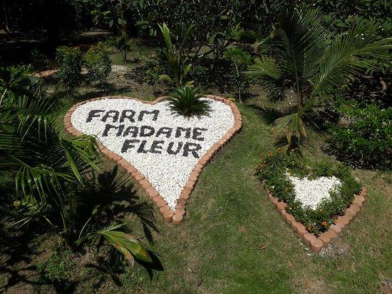 Farm Madame Fleur