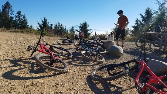 Seattle Mountain Bike Tours - 2019 Book in Destination - All You