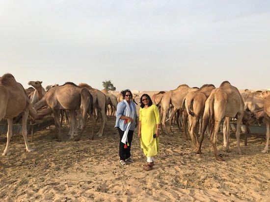 Extreme Arabia