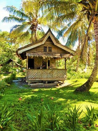 Guadalcanal Island Foto