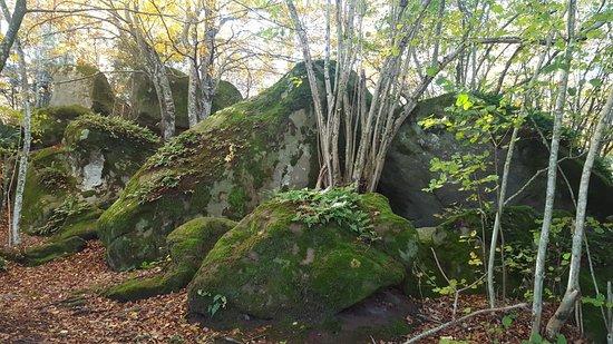 Les Roques Encantades