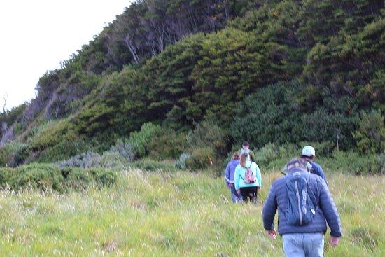 Borealis Adventures Patagonia