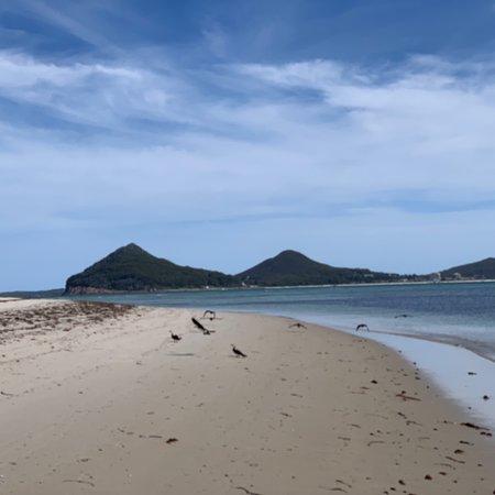 Jimmy's Beach Photo