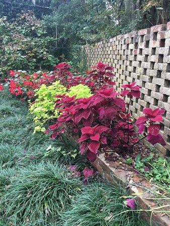 Brookgreen Gardens Photo