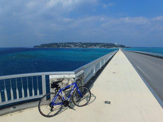 Noleggio Cicli