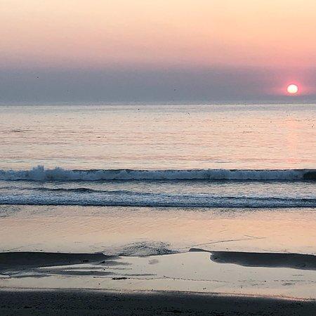 Cavalier Oceanfront Resort Bild