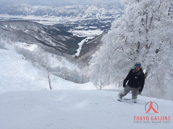 Tokyo Gaijins - Day Tours