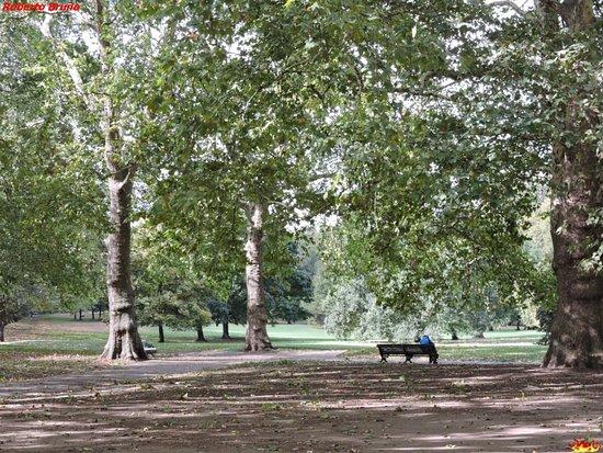 Green Park: Il Parco