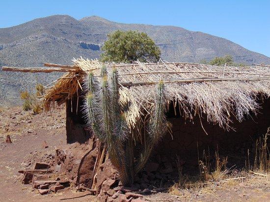 Region Coquimbo Foto