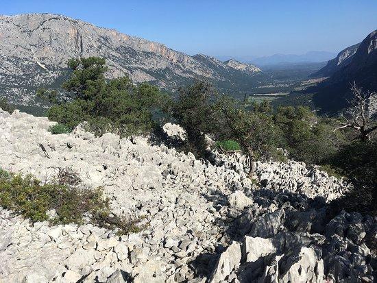 Oliena, Italia: Amazing karst geology on the way back down