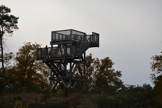 National Park de Meinweg
