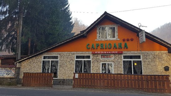 Complex Caprioara