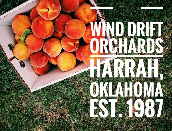 Wind Drift Orchards