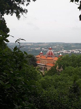 Sintra Municipality Foto
