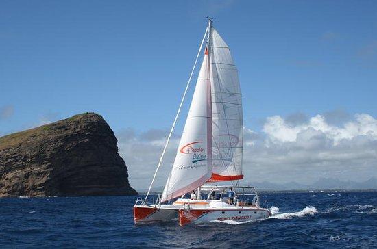 Ilot Gabriel Catamaran Cruise in...