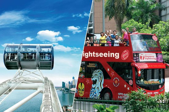 Singapore Flyer og Big Bus Hop-On...