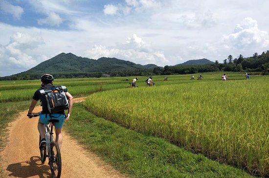 Yao Island Cycling and Beach