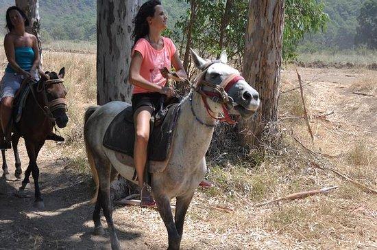 Safari de caballos de Kemer, Goynuk...