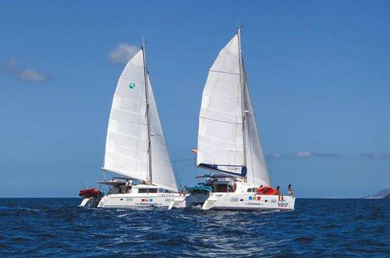Tour de 3 horas en velero por la isla...