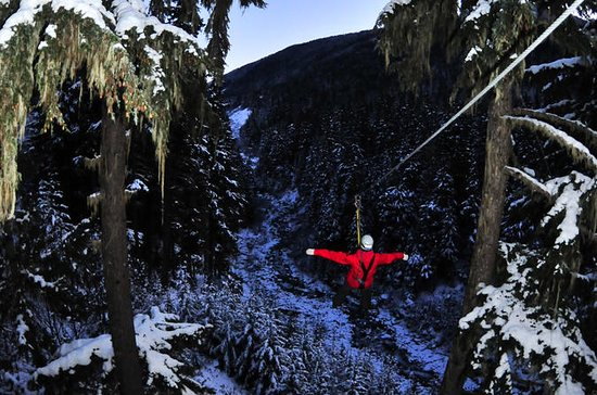 Winter Twilight Zipline Adventure i...