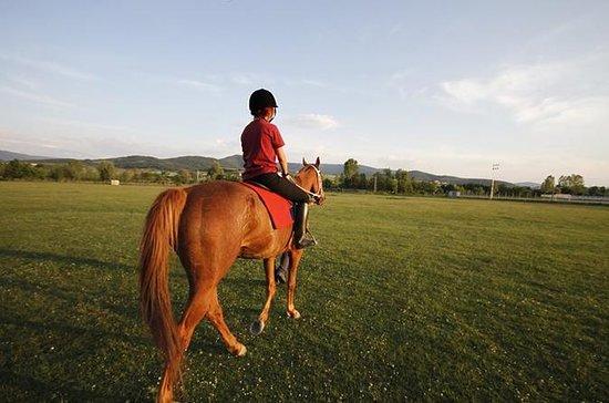 プライベートのピックアップとドロップオフでの乗馬とアーチェリー体験