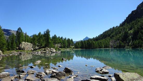 Valtelline Valley Foto