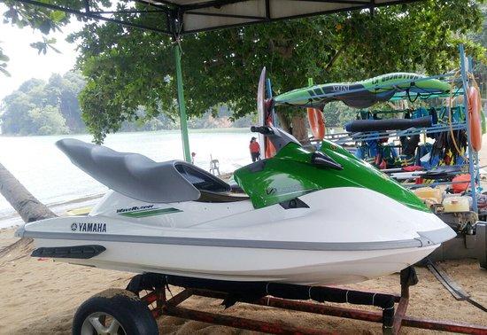 Seaforest Adventure Nuvusa Bay
