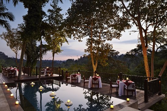 Dining Corner Restaurant: is a stylish restaurant elevated high over a river valley that blends seamlessly into the encompassing woodland.