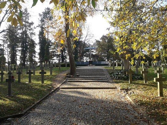 Pomnik Pionierów Szczecina 1945-1946