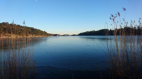 Bogesundslandet naturreservat