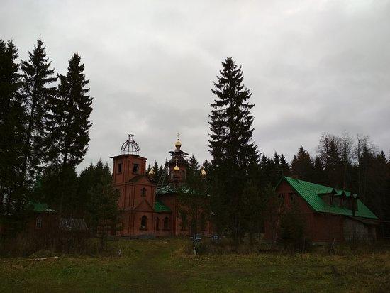 Tosnensky District, Russland: Вид от несуществующей дороги