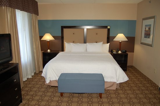 Hampton Inn and Suites Charlotte Airport: King Bed Room