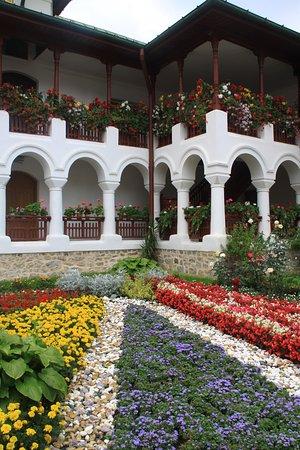 Neamt County, Rumania: jardin