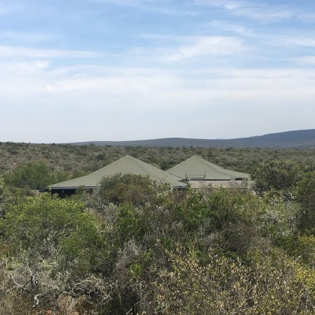 Kwandwe Private Game Reserve Foto