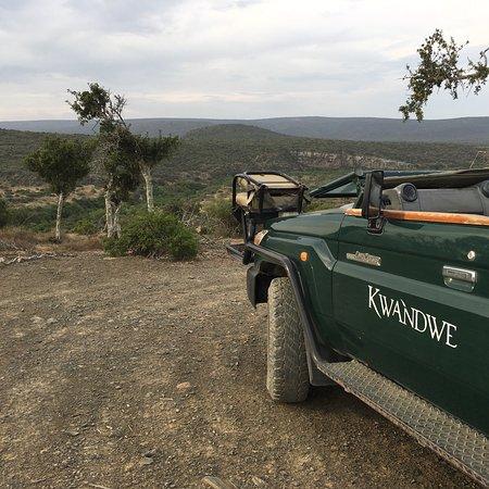 Zdjęcie Kwandwe Private Game Reserve