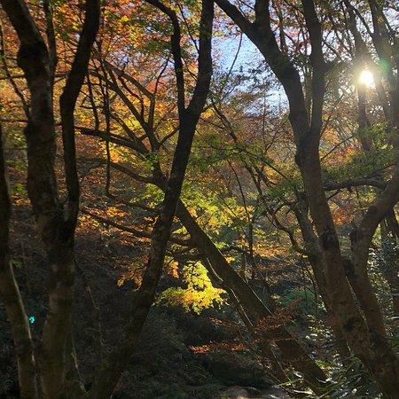 Takahagi Φωτογραφία