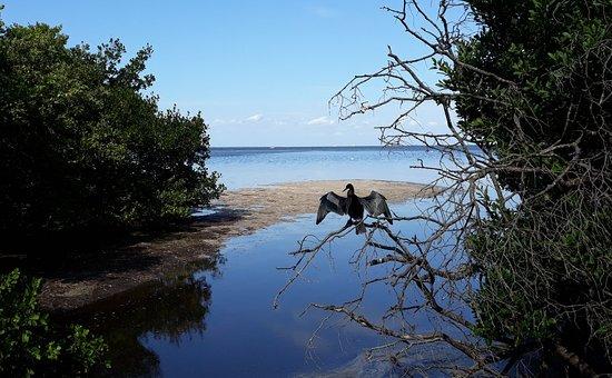 Robinson Nature Preserve 사진