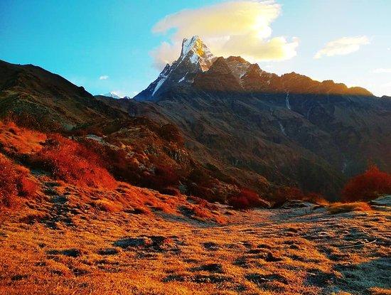 Bilde fra Annapurna Region