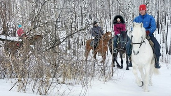 Republic of Bashkortostan, Rusia: Horseback riding tours in Bashkiria