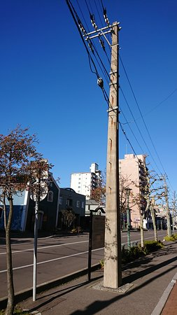 Oldest Telegraph Pole