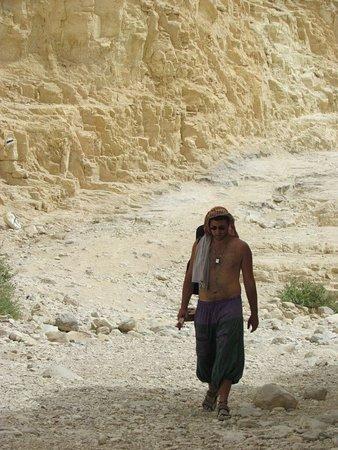 Almog, Palestijnse grondgebieden: השראה