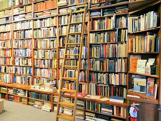 DogStar Books
