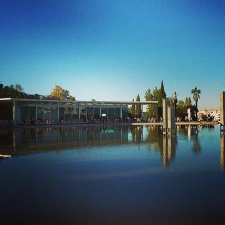 Linha d 39 gua lisbona ristorante recensioni numero di telefono foto tripadvisor - Numero di telefono piscina ortacesus ...