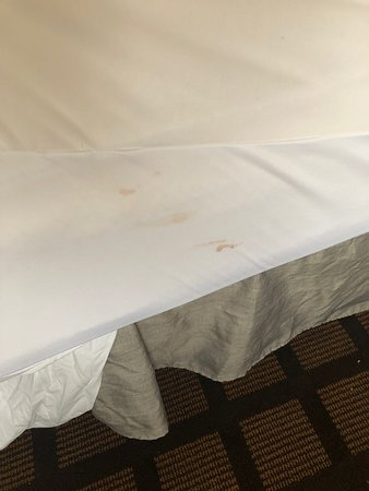 Burbank, IL: BLOOD STAIN ON MATTRESS PROTECTOR