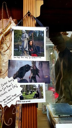 Vampire Stalkers/Mystic Falls Tours-Vampire Diaries/Originals Tours Foto