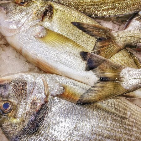 Beach Bar Burgau: Daily fresh fish