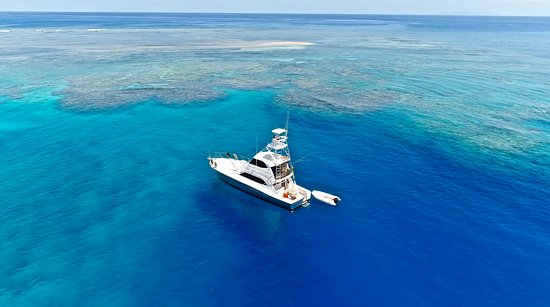 Pantai Airlie, Australia: Fascination II - Great Barrier Reef - Topnotch Game Fishing - Airlie Beach
