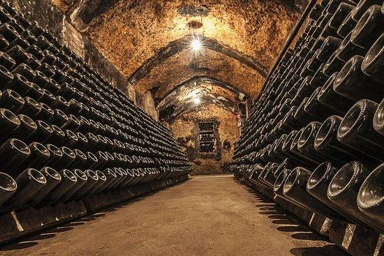 Cavas Freixenet Vin Tour fra Mexico...