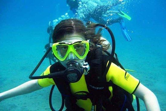 Boble Maker Children's Diving...